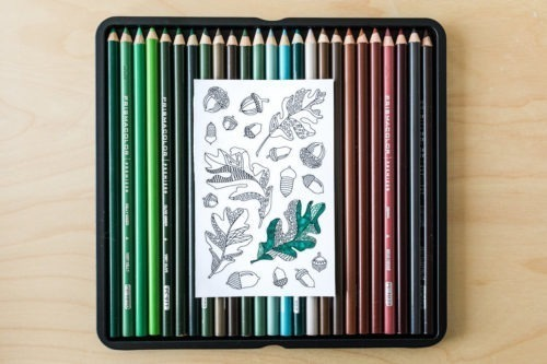 acorn coloring stickers adult coloring page autumn fall bullet journal theme stickers thanksgiving stickers thanksgiving party favors oak leaves stickers oak leaf stickers autumn leaf stickers fall stickers