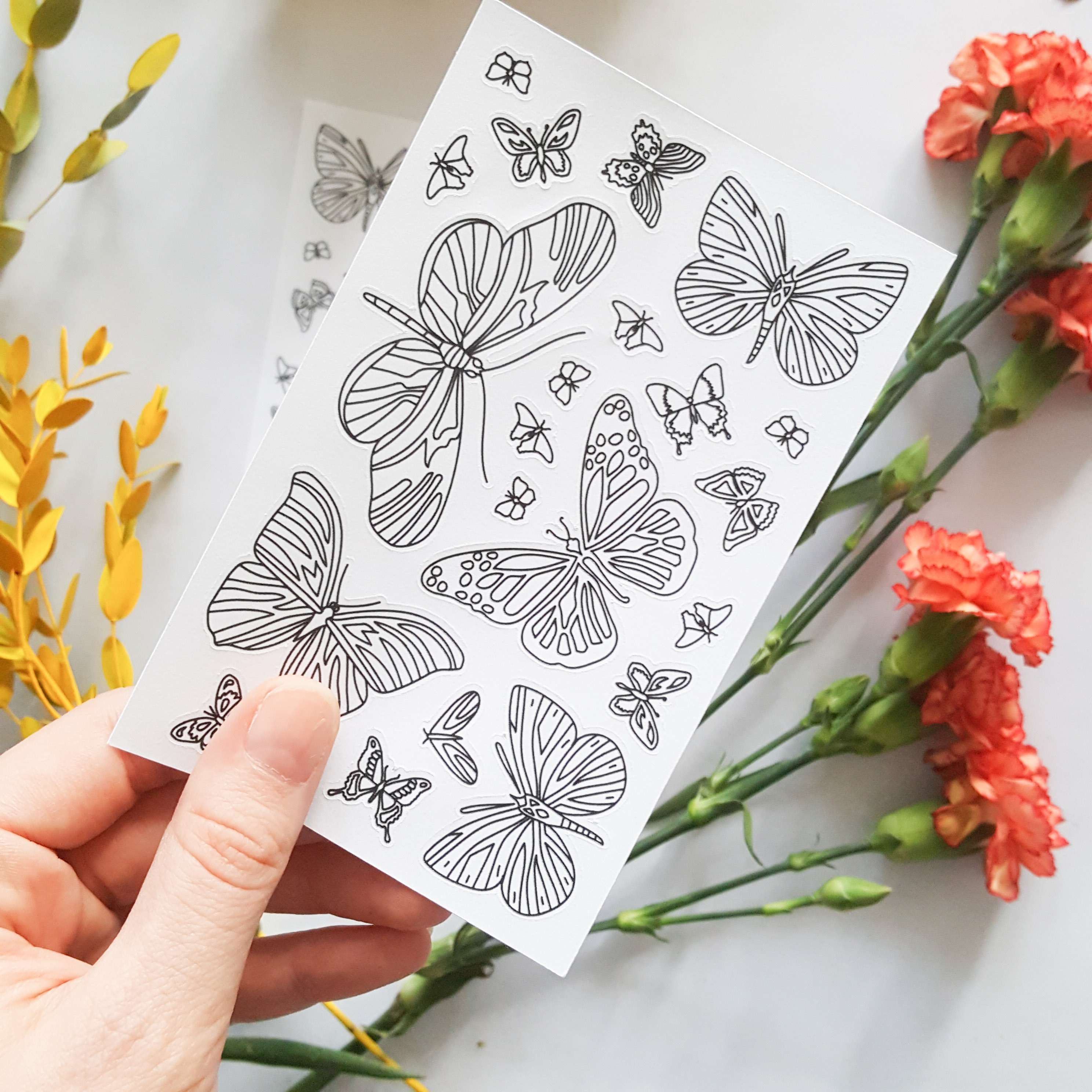 butterflies coloring stickers detail
