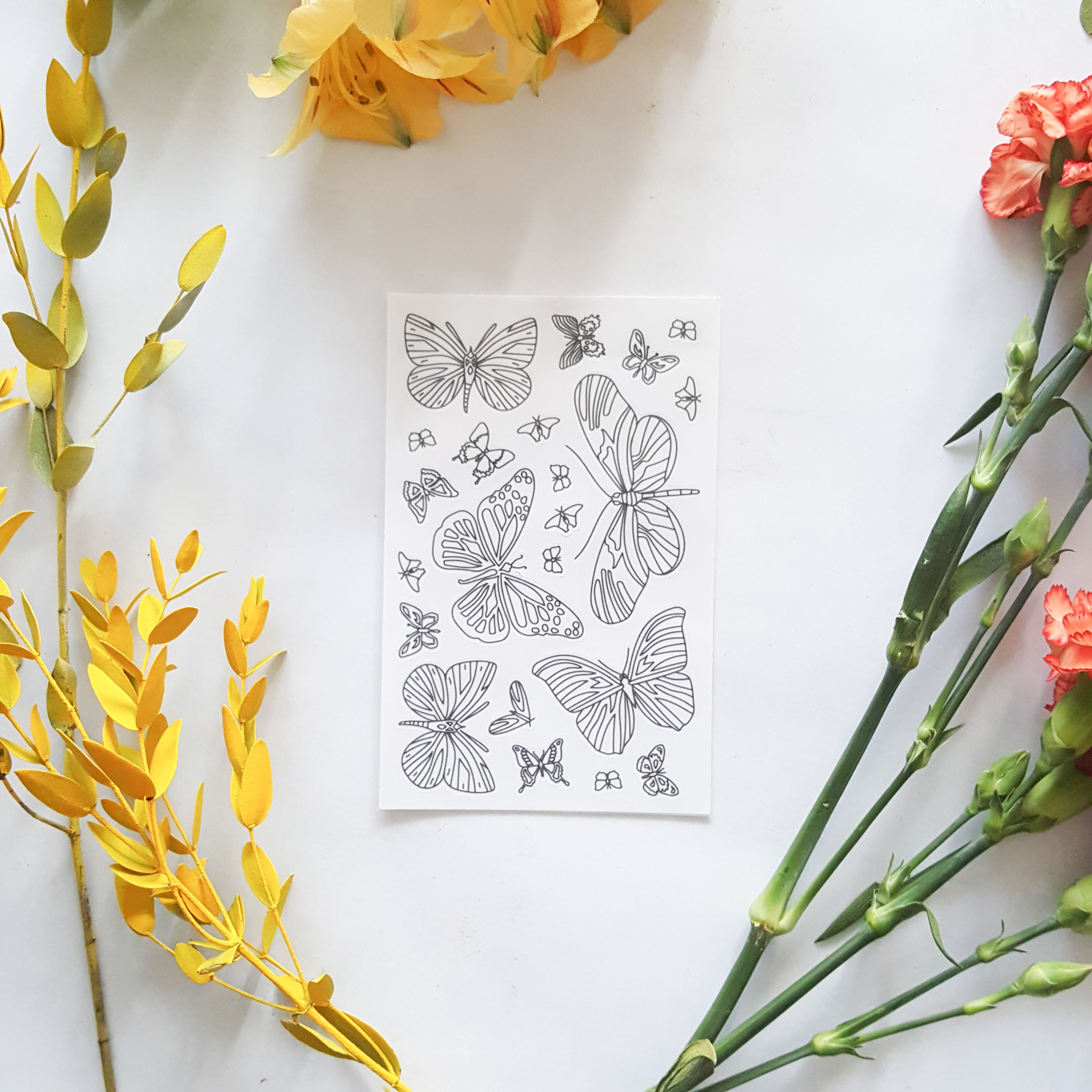 butterflies coloring stickers packaging