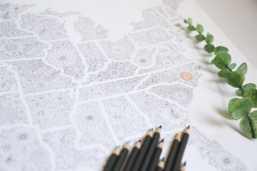 flowers usa map us travel map flowers map sharpie map adult coloring map adult coloring poster us sales map etsy sales map us traveling map traveler gifts united states of america map illustration adult coloring page