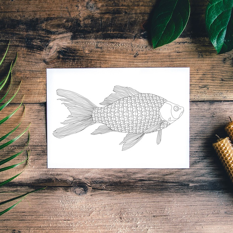 fish postcard with diamond pattern fish scales for fishing lovers