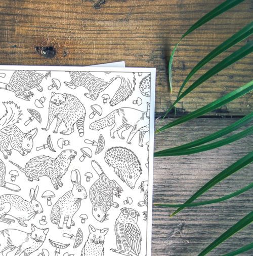 adult coloring postcard greeting card with animals forest zoo fox owl wolf