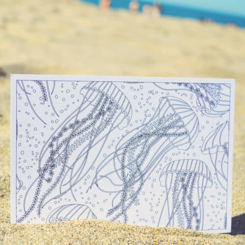 jellyfish sea postcard for adult coloring