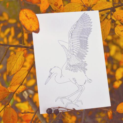 stork large bird postcard for adult coloring