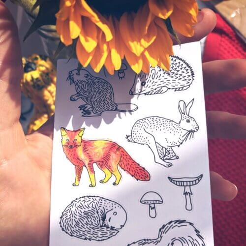 forest animals stickers for adult coloring