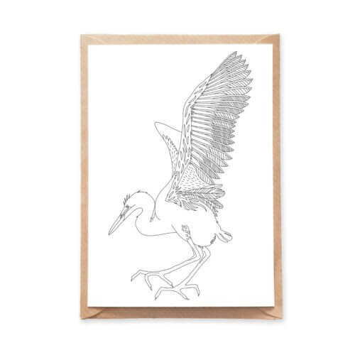 Large Flying Bird Coloring Postcard Stork Ornitology Postcard for Adult Coloring