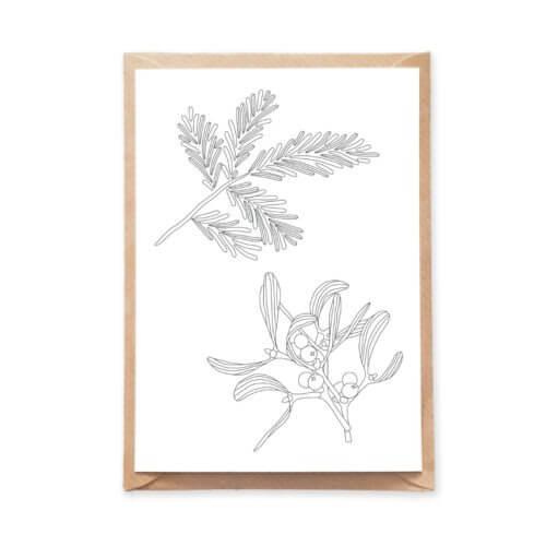 Mistletoe Botanical Postcard Christmas Tree Branch Illustration Holiday Card